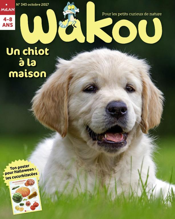 Avec votre ABONNEMENT, 2 mois OFFERTS au magazine Wakou !